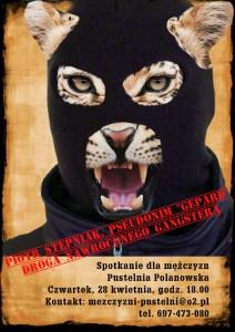 Gepard_web